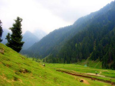 Pahalgam | Kashmir
